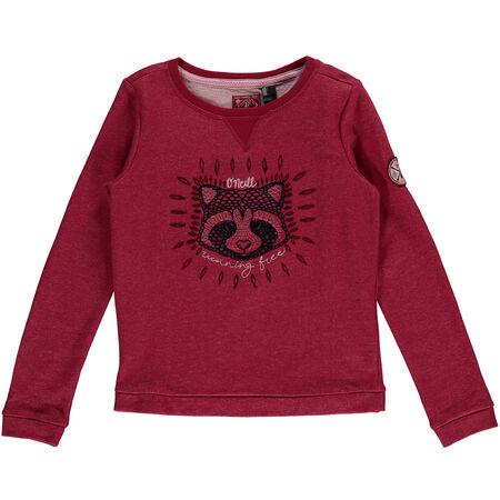 Free To Explore Sweatshirt