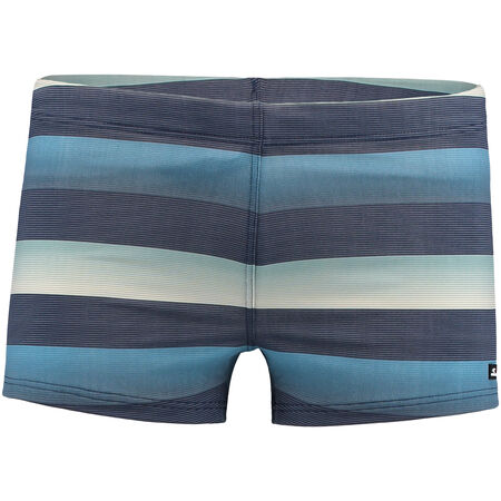 Santa Cruz Stripe Swimming Trunk