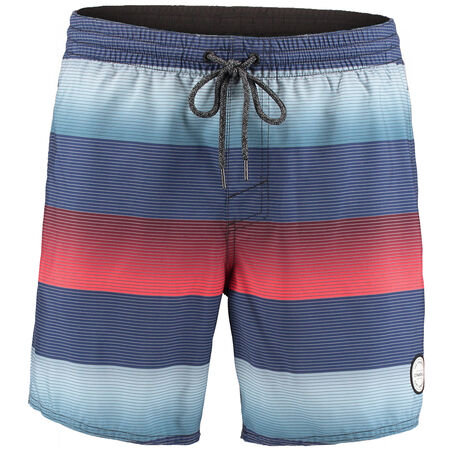 Santa Cruz Stripe Swim Shorts