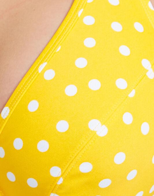Betty Halterneck Bikini Top