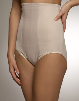 Miraclesuit Shapewear Classic Rigid Panel Hi Waist Brief