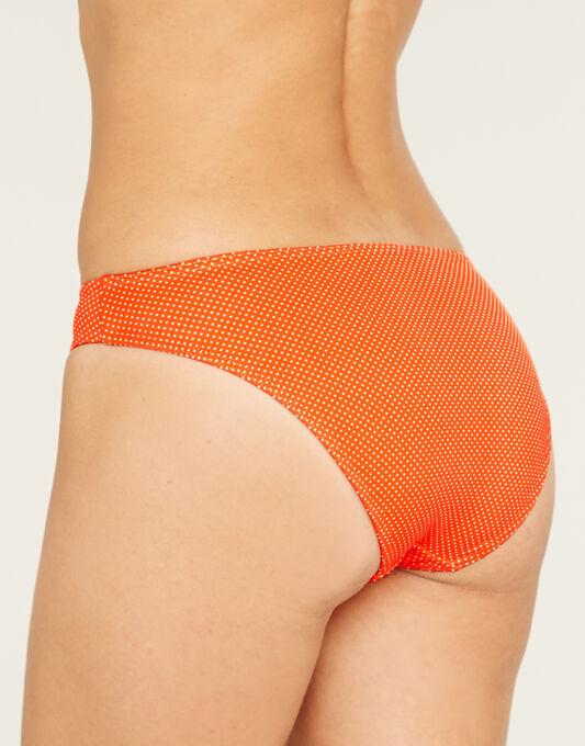 Freya Swim Cherish Pin Spot Classic Print Bikini Brief