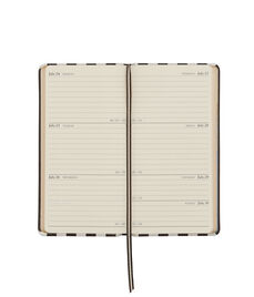 2017 Centennial Stripe Pocket Journal