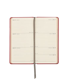 2017 Party Girls Pocket Journal