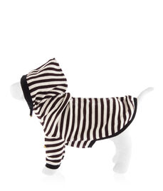 Henri Bendel Puppy Sweater