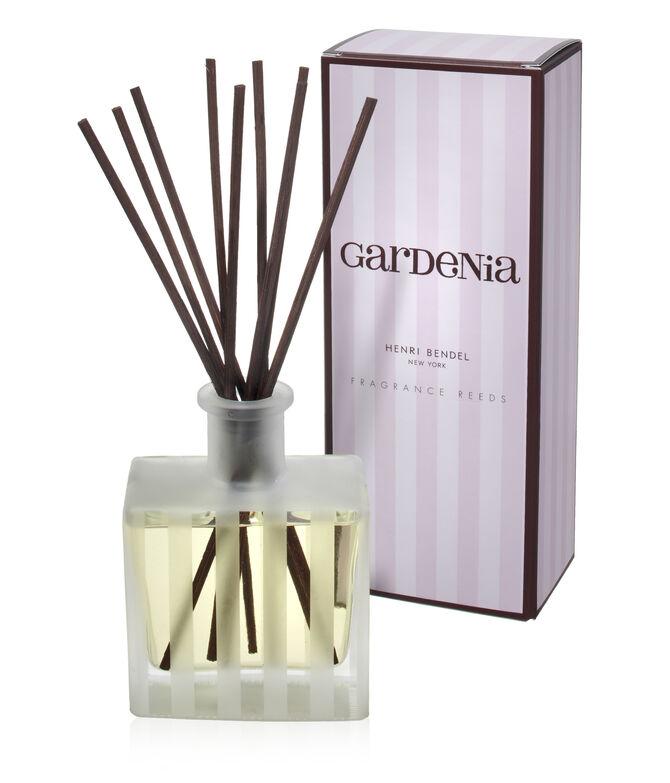Gardenia Signature Reed