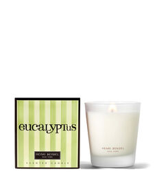 Eucalyptus Signature 9.4 Oz Candle