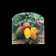 Mascarilla de Mango para Noche Night Miracle, , hi-res