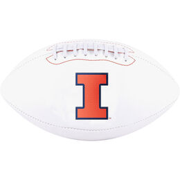 NCAA Illinois Fighting Illini Football