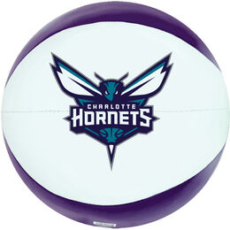 NBA Charlotte Hornets Basketball