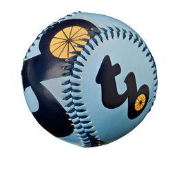 MLB Tampa Bay Rays Baseball