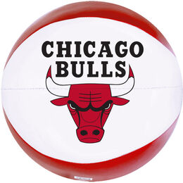 NBA Chicago Bulls Basketball