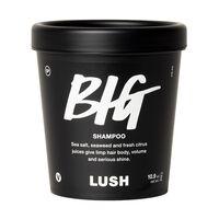 Big Shampoo image