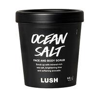 Ocean Salt image