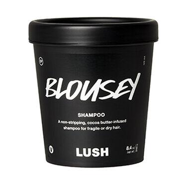 Blousey image