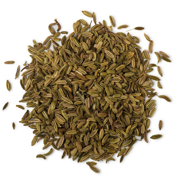 Image of Fresh Fennel (Foeniculum vulgare)