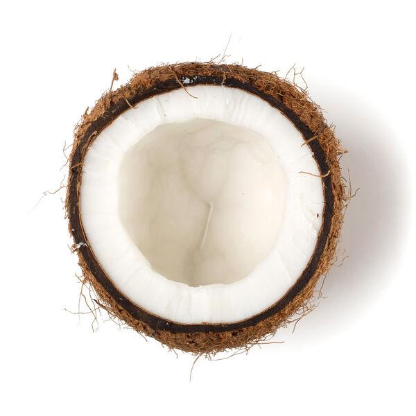 Image of Creamed Coconut (Cocos nucifera)