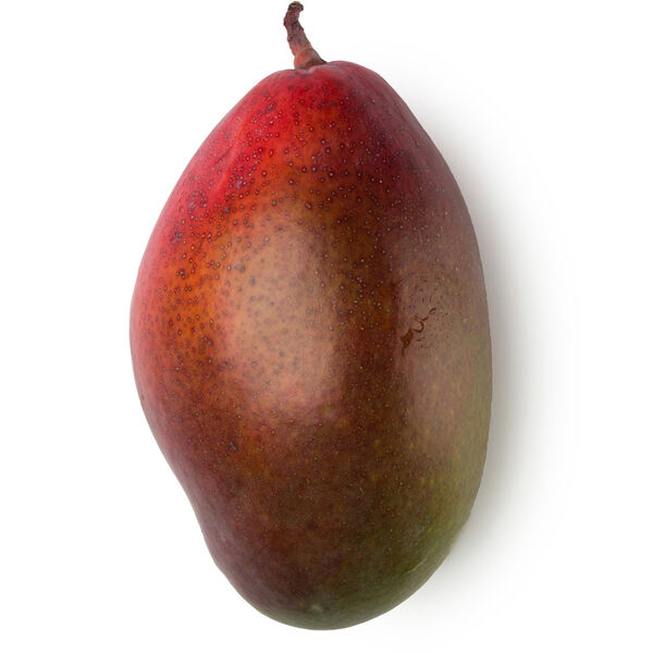 Image of Fresh Mango Juice (Mangifera indica)