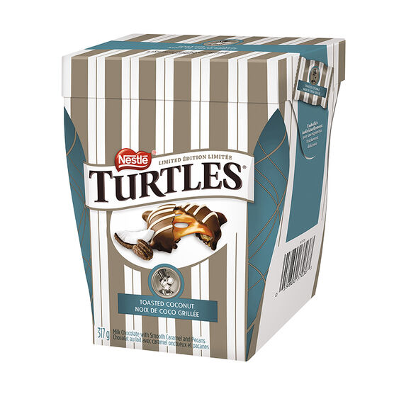 Nestle Turtles - Toasted Coconut - 317g