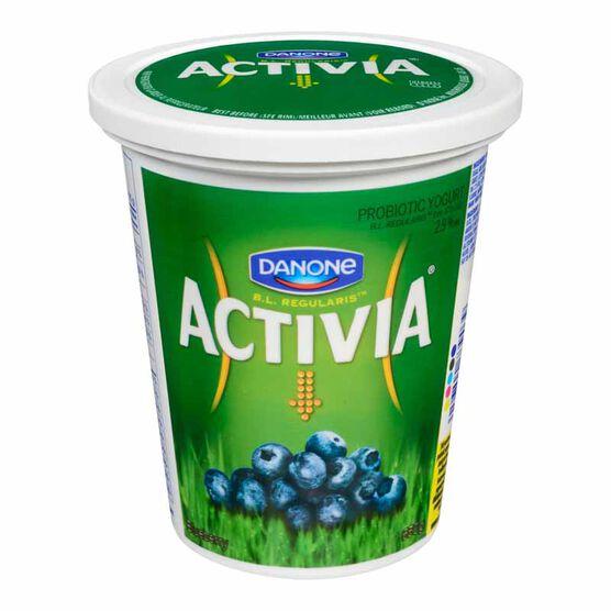 Danone Activia Yogurt - Blueberry-650g
