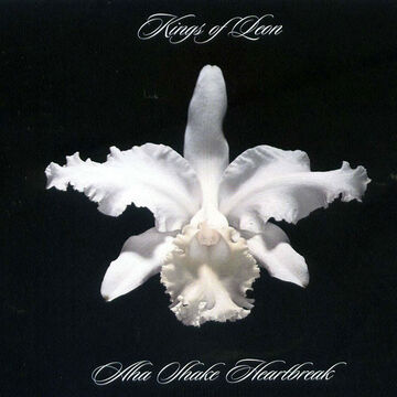 Kings of Leon - Aha Shake Heartbreak - Vinyl