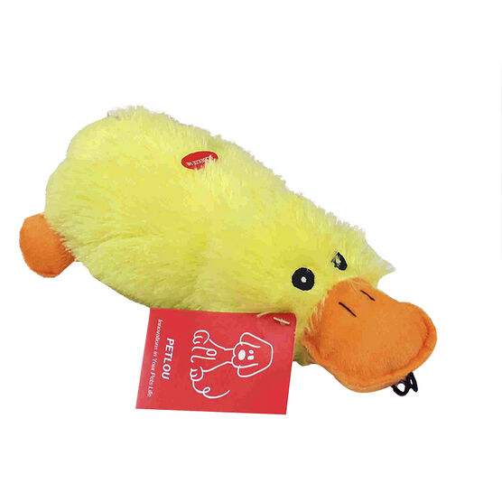 Stuffed Dog Toy - Platypus