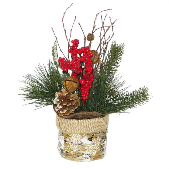 Christmas Forever Potted Pine - 12in - XM-HH2283