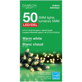 Danson Indoor LED Lights - 50 lights - Warm White - X77218