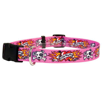 Yellow Dog Collar - Luv My Dog - Small