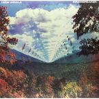 Tame Impala - Innerspeaker - 2 LP Vinyl