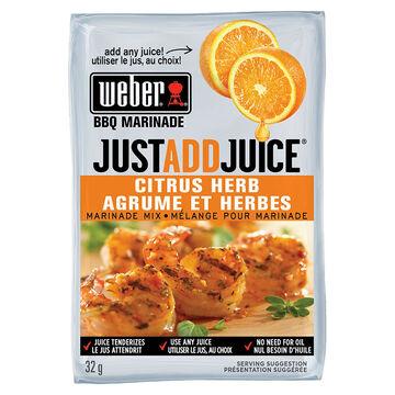 Weber Just Add Juice Marinade Mix - Citrus Herb - 32g