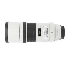Canon EF 300mm f/4.0L IS USM Lens