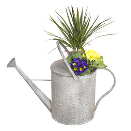 London Drugs Antique Water Can Planter - 62x28x37cm
