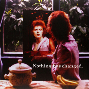 David Bowie - Nothing Has Changed - 2 LP Vinyl