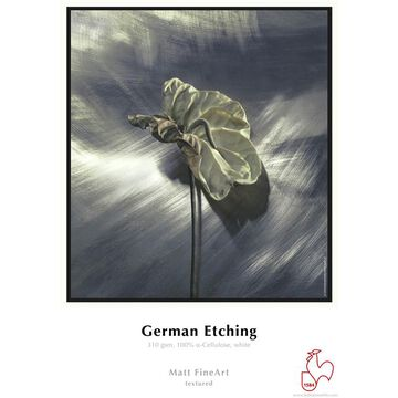 Hahnemuhle German Etching Paper - 13 x 19 inch - 20 sheets
