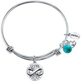 UNWRITTEN Stainless Steel Friends Are Family Expandable Bangle