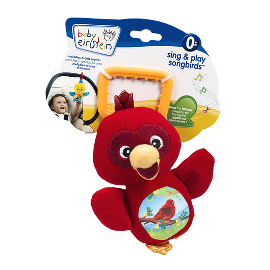 Baby Einstein Sing & Pay Songbirds