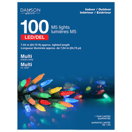 Danson LED Lights - 100 lights