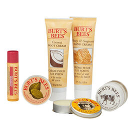 Burt's Bees Tips and Toes Kit - 5 piece