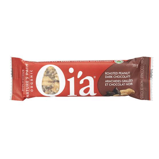 Nature's Path Organic Qi'a Bar - Roasted Peanut Dark Chocolate - 38g