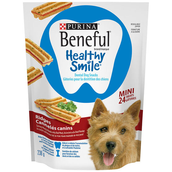 Purina Beneful Mini Healthy Smile Treats - Ridges - 238g