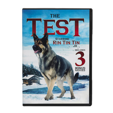 The Test - DVD