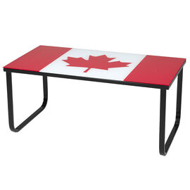 LD Tempered Glass Table - 100 x 50 x 43cm