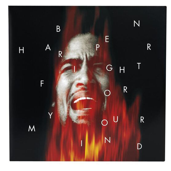 Harper, Ben - Fight for Your Mind - Vinyl