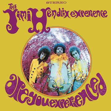 The Jimi Hendrix Experience - Are You Experienced (Stereo) - Vinyl