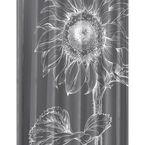 Splash Home Helia Shower Curtain - Charcoal - 70 x 72inch