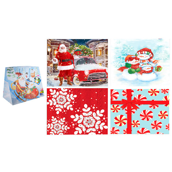 Paper Trendz Extra-Wide Gift Bag - Horizontal - Assorted