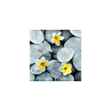 Nuvo Design Napkins - Rocks and Flowers - 20's