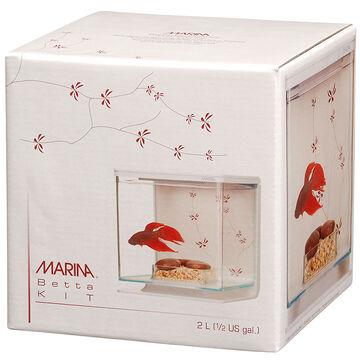 Betta Fish Starter Kit - Contemporary - 2L