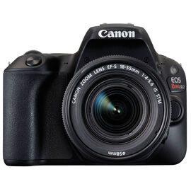 PRE-ORDER: Canon EOS Rebel SL2 with 18-55mm IS STM Lens - Black - 2249C002
